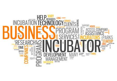 What Are Startup Incubators, and How Do You Use Them