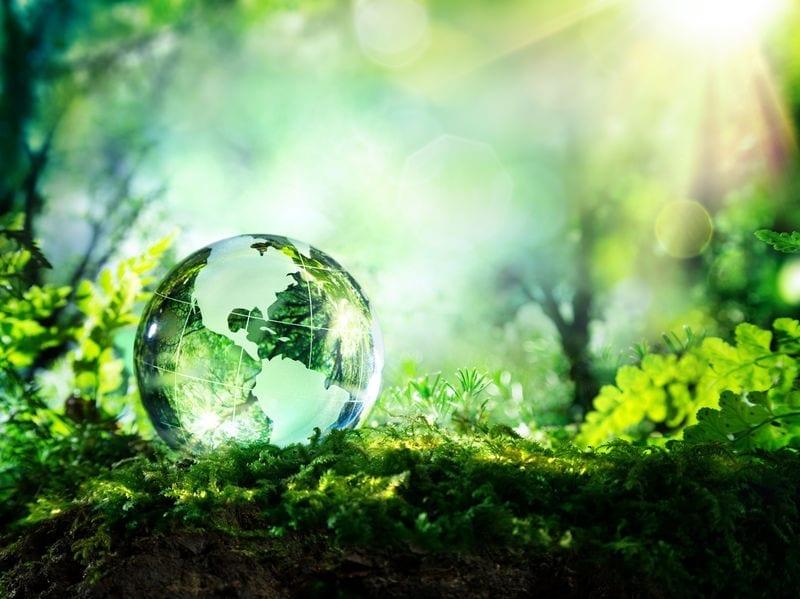 Environmental Factors in your PESTEL Analysis